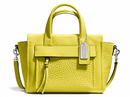 Coach Bleecker Mini Riley Carryall