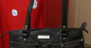 Lavie Cannes SM Leather Satchel